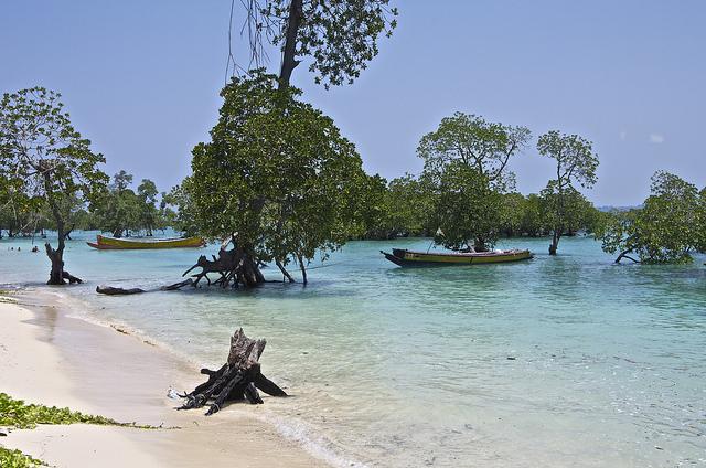 Andaman Bluebay Holidays