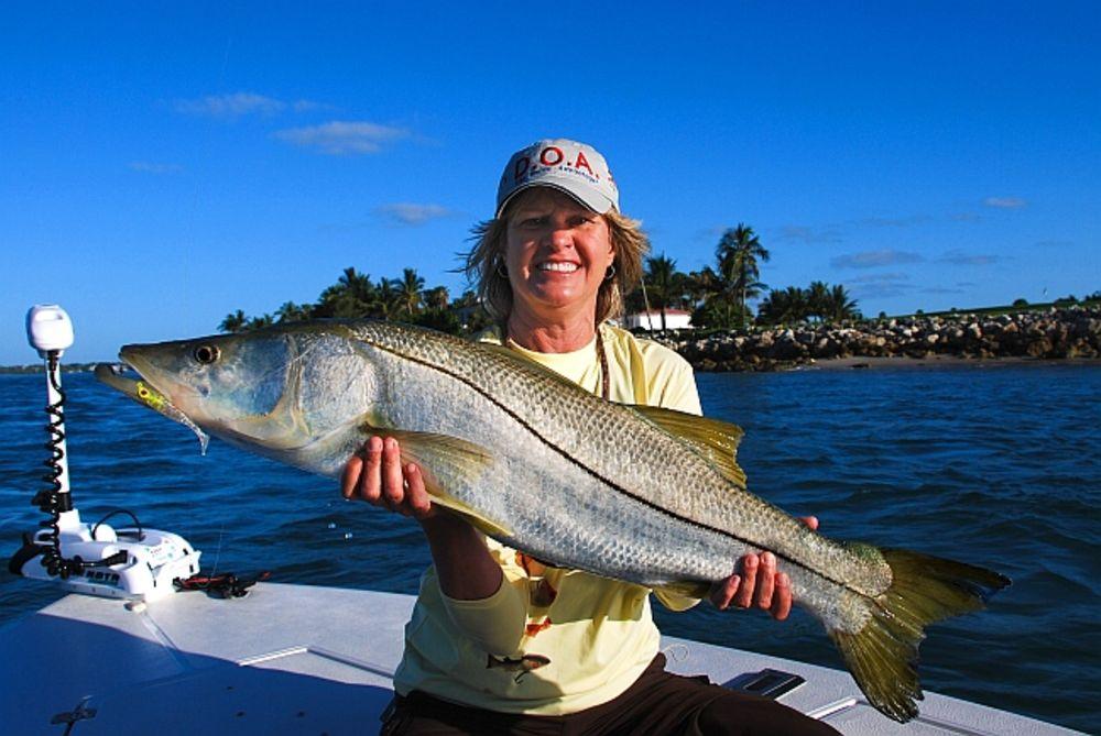 Andaman bluebay holidays planning you andaman trip for River fishing games